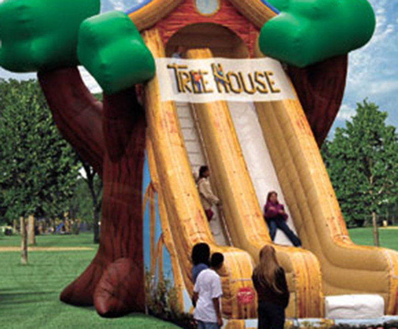 Giant Tree House Slide